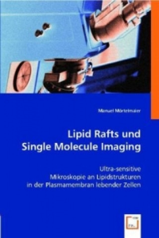 Lipid Rafts und Single Molecule Imaging