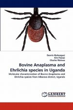 Bovine Anaplasma and Ehrlichia species in Uganda