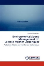 Environmental Sound Management of Lactose Mother Liquoriquor