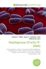 Haplogroup Q1a3a (Y-DNA)