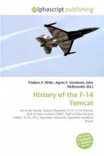 History of the F-14 Tomcat
