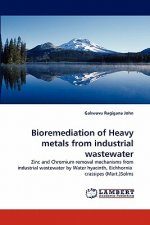Bioremediation of Heavy metals from industrial wastewater