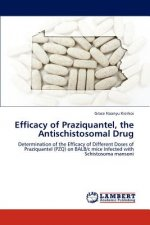 Efficacy of Praziquantel, the Antischistosomal Drug