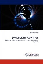 Synergetic Control