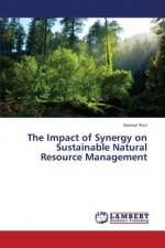 The Impact of Synergy on Sustainable Natural Resource Management