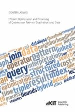 Efficient Optimization and Processing of Queries over Text-rich Graph-structured Data