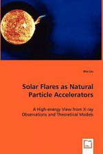 Solar Flares as Natural Particle Accelerators