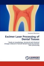 Excimer Laser Processing of Dental Tissues