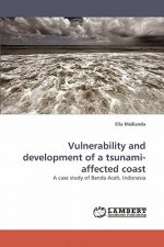 Vulnerability and development of a tsunami-affected coast