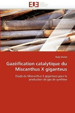 Gazéification catalytique du Miscanthus X giganteus