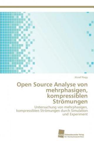 Open Source Analyse Von Mehrphasigen, Kompressiblen Stromungen