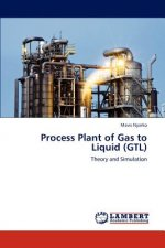 Process Plant of Gas to Liquid (GTL)