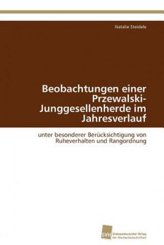 Beobachtungen Einer Przewalski-Junggesellenherde Im Jahresverlauf