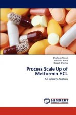 Process Scale Up of Metformin HCL