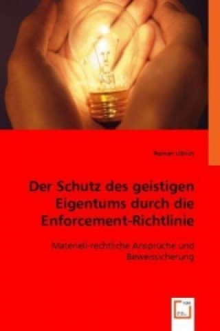 Der Schutz des geistigen Eigentums durch die Enforcement-Richtlinie