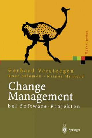 Change Management Bei Software Projekten