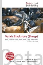 Valais Blacknose (Sheep)