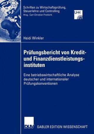 Prufungsbericht von Kredit- und Finanzdienstleistungsinstituten