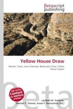 Yellow House Draw