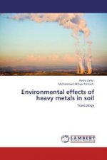 Environmental effects of heavy metals in soil