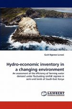 Hydro-economic inventory in a changing environment