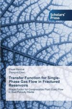 Transfer Function for Single-Phase Gas Flow in Fractured Reservoirs