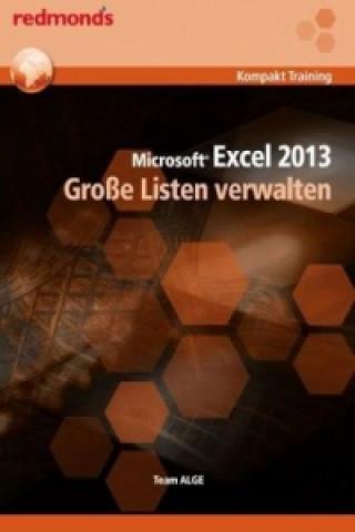 Microsoft Excel 2013 - Große Listen verwalten