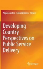 Developing Country Perspectives on Public Service Delivery, 1