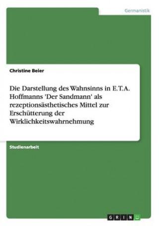 Darstellung des Wahnsinns in E. T. A. Hoffmanns Der Sandmann als rezeptionsasthetisches Mittel zur Erschutterung der Wirklichkeitswahrnehmung