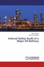 Internal Safety Audit of a Major Oil Refinery