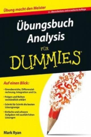 UEbungsbuch Analysis fur Dummies