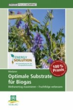 Optimale Substrate für Biogas