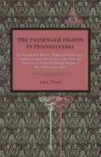 Passenger Pigeon in Pennsylvania