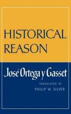 Historical Reason