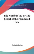 FILE NUMBER 113 OR THE SECRET OF THE PLU