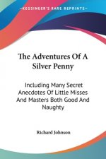 The Adventures Of A Silver Penny: Including Many Secret Anecdotes Of Little Misses And Masters Both Good And Naughty