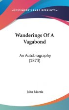 Wanderings Of A Vagabond: An Autobiography (1873)