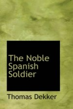Noble Spanish Soldier