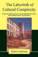 Labyrinth of Cultural Complexity
