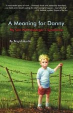 Meaning for Danny