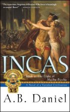 Incas: Book 3: The Light of Machu Picchu