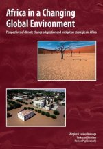 Africa in a Changing Global Environment. Perspectives of climate change adaptation and mitigation strategies in Africa