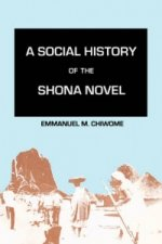 Social History of the Shona Novel