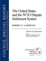 United States and the WTO Dispute Settlement System