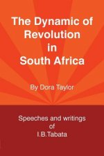 Dynamic of Revolution in South Africa