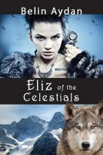 Eliz of the Celestial Turks