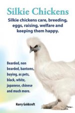 Silkie Chickens Care, Breeding, Eggs, Raising, Welfare and Keeping Them Happy