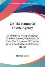 On The Nature Of Divine Agency
