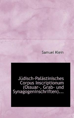Judisch-Palastinisches Corpus Inscriptionum Ossuar-, Grab- Und Synagogeninschriften