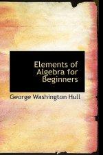Elements of Algebra for Beginners